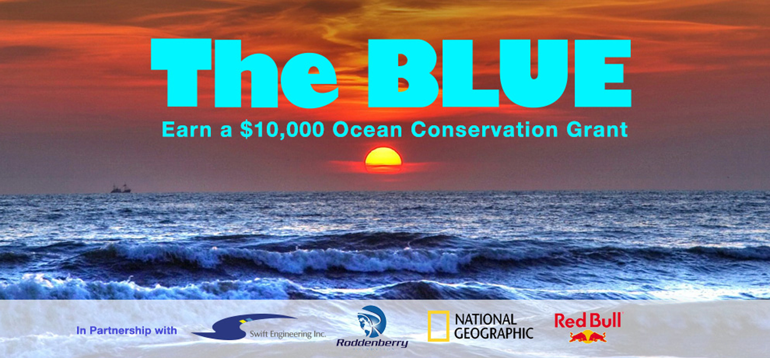 The BLUE : A $10,000 Conservation Grant – Launched