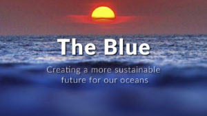 The Blue Story